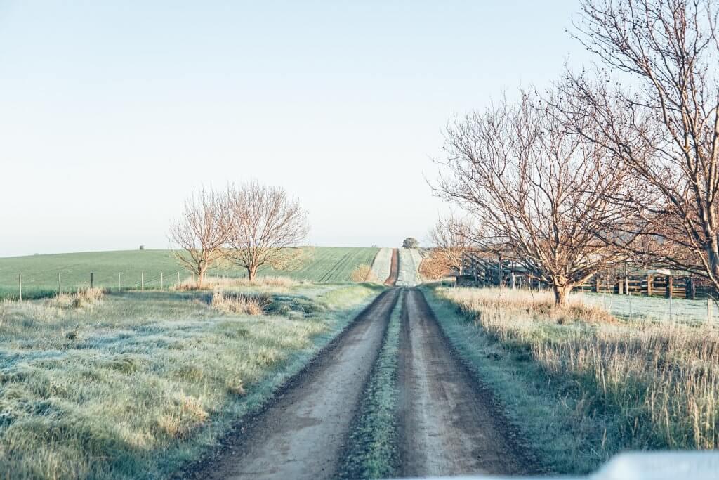 מסלולי חורף בארץ אריקסון מקאן