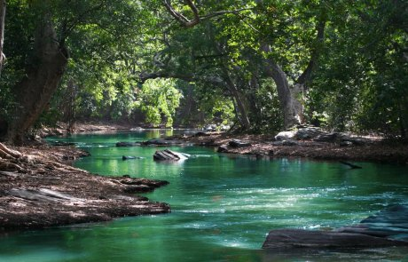המקומות היפים בישראל – מסלולי טיול