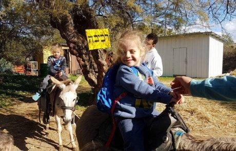 חוגגים יום הולדת בחווה בגבעת ברנר- הטבה לחברי מה עושים בשבת