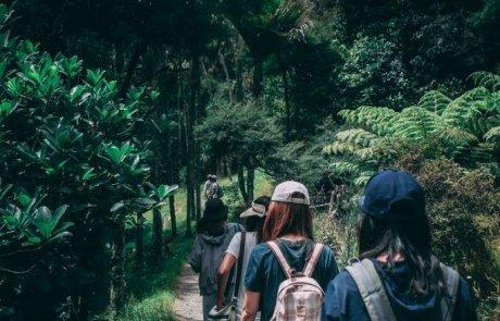 טיפים לטיול שקט לסובלים מבריחת שתן
