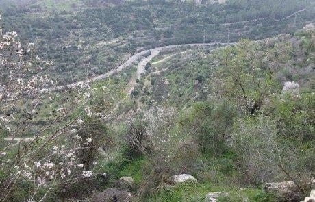 המלצה למסלול טיול בסטף שבהרי ירושלים