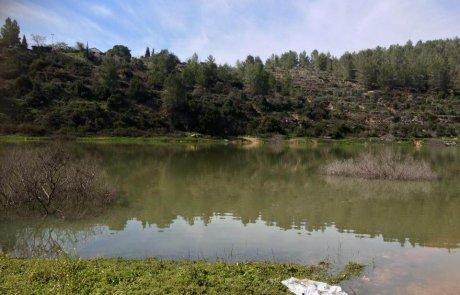 מסלול טיול לאגם בית זית – מאגר בית זית בהרי ירושלים