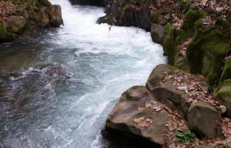 טיול לנחל חרמון – מפל הבניאס -בגליל העליון