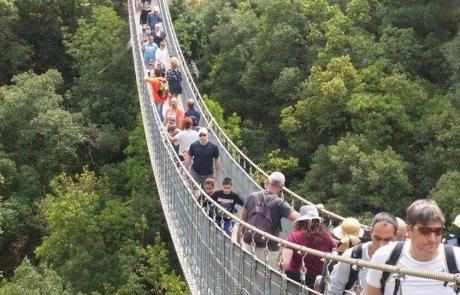 טיול לגשרים התלויים בפארק נשר שבצפון
