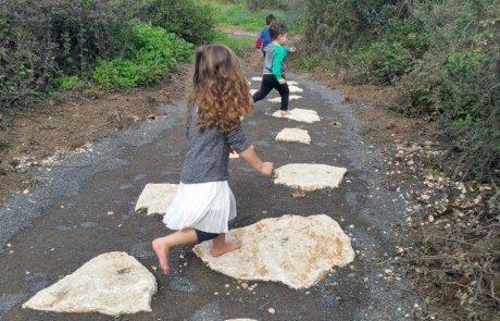 פארק חושים בשמורת הטבע נחל שניר – ללכת בעקבות הטבע