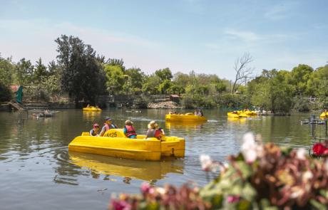 ״אגם חי״  אגם טבעי וקסום – אתר תיירות ונופש לכל המשפחה